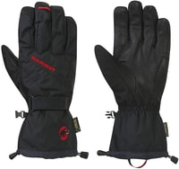 Expert Tour Glove Men black