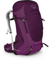 SIRRUS 36 II ruska purple