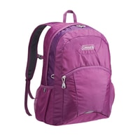 Practi-City purple 20l