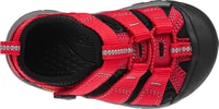 Newport H2 INF ribbon red/gargoyle
