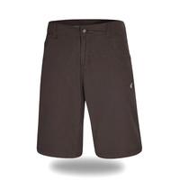 CASMP9029 GRA - pánské šortky pánské šortky